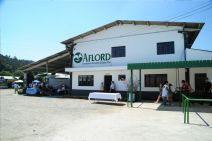 aflord 03